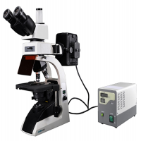 Fluorescence Biological Microscope MFBM-2A